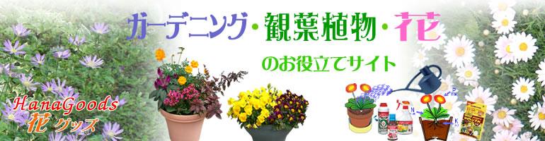 花・観葉植物のお役立てサイトの花グッズ